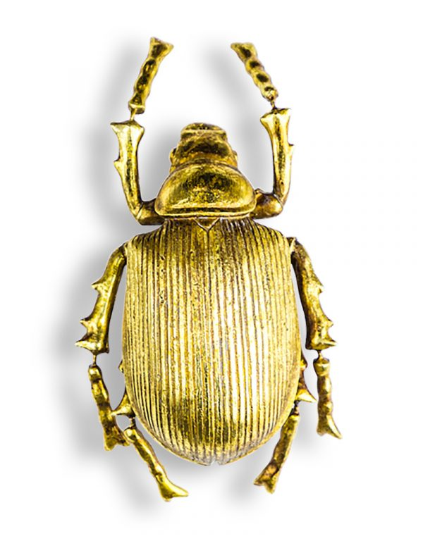 Small Gold Beetle - Source Interiors