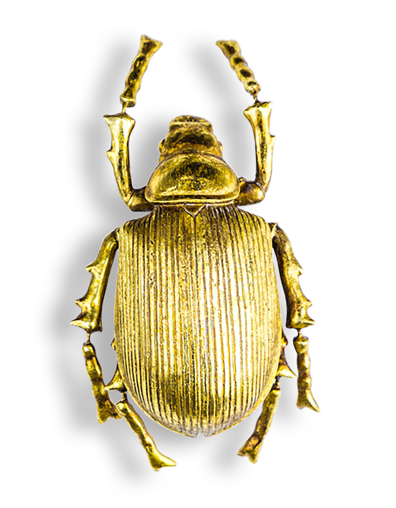 Gold Beetle €49.00