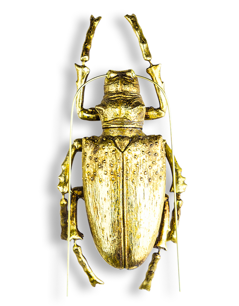 Gold Beetle €59.00