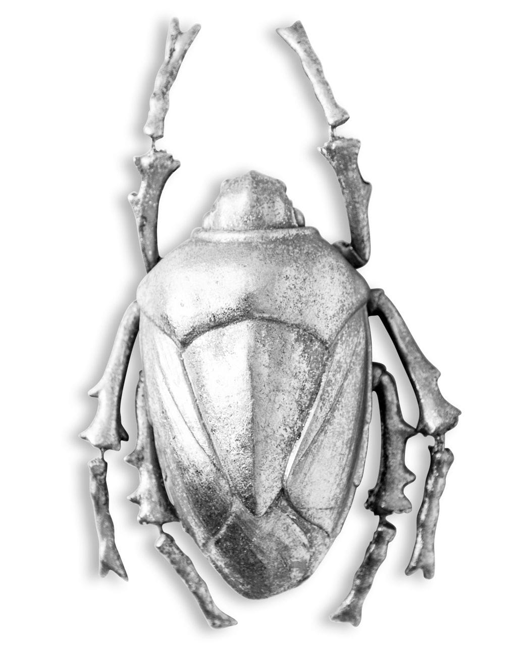 Large Silver Beetle Wall Decor - €69.00 | L27.5xW13.5xD5.6cm
